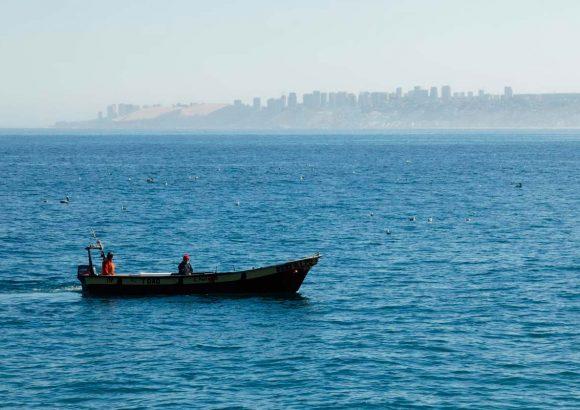 Conjunto de medidas socioeconómicas de apoyo al sector artesanal de la pesquería de merluza común.